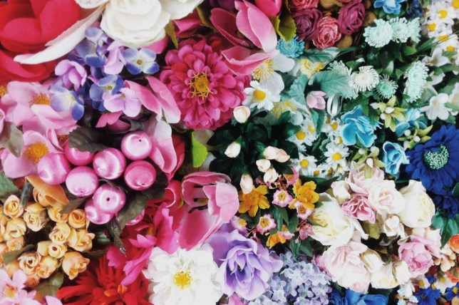 Know About Top 6 Beautiful Flowers and their Meaning