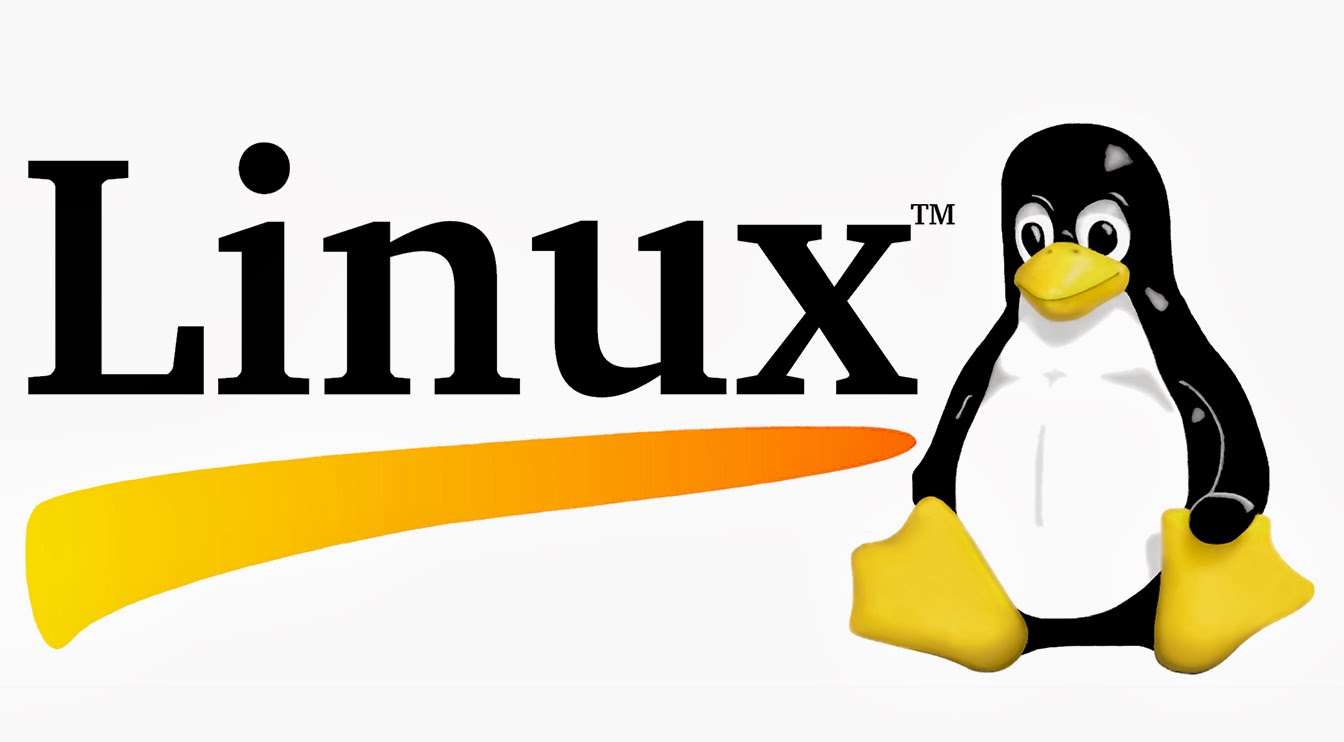 What Is Linux Operating System