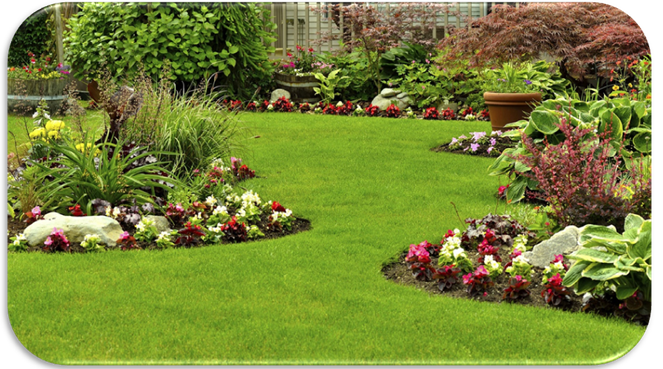 HOW YOU CAN MAKE QUICK MONEY WITH HOME GARDENING SERVICE
