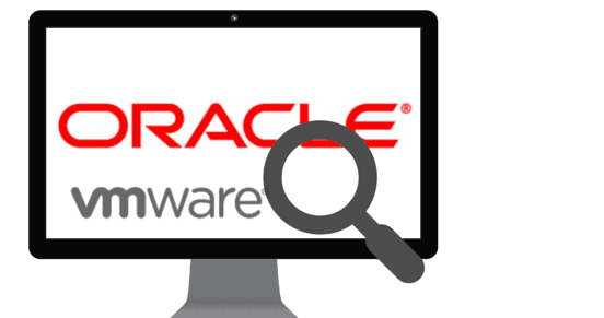 ORACLE AND VMWARE FORGE A PARTNERSHIP FOR HYBRID CLOUD STRATEGIES AND TECHNICAL SUPPORT