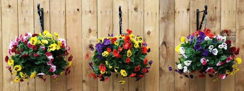 Top 6 Stunning Flowers for Hanging Baskets