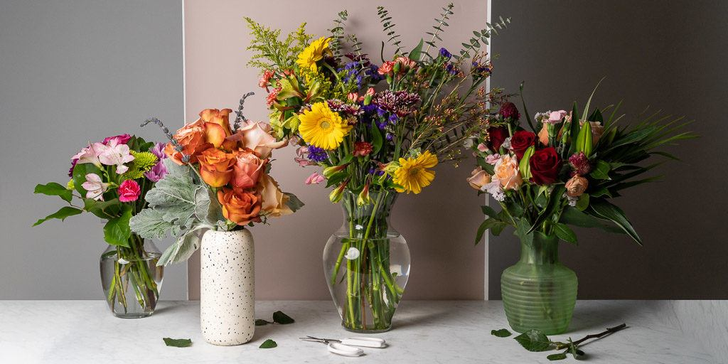 Budget-friendly flower gift ideas for multiple occasions